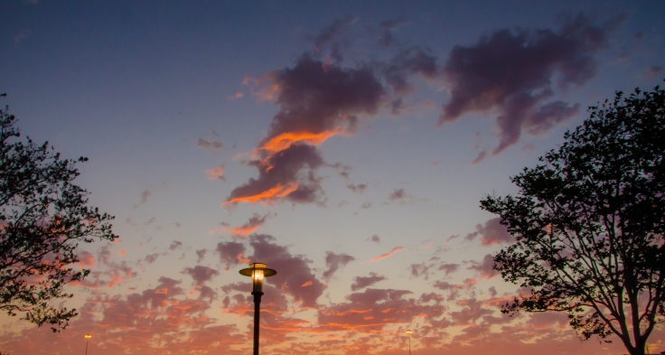 sunsetangels